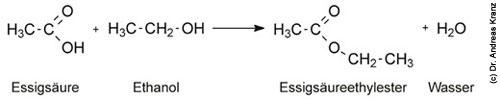 Abb. 15.1: Bildung von Essigsäureethylester aus Ethanol in Gegenwart von Essigsäure